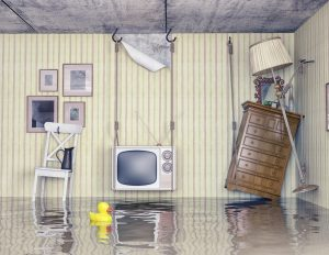 Learn how water damage restoration crews work to clean and repair your home or business in Gold Canyon.